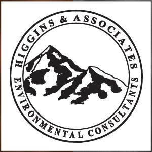 Higgins & Associates